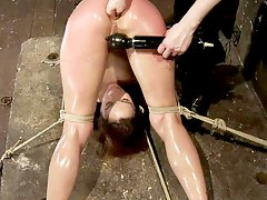 oiled brunette getting her ass